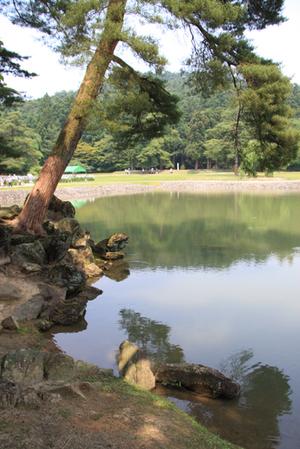 2009ichinoseki06